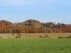 Blick zur Ebersburg