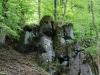 im-Steinmuehlental-bei-Appenrode-Andre-Richter