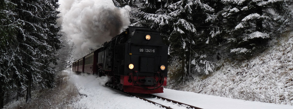 Dampflok im Winter am Haltepunkt Sophienhof