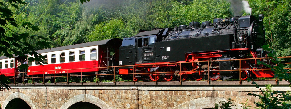 Dampflok auf dem Viadukt bei Ilfeld