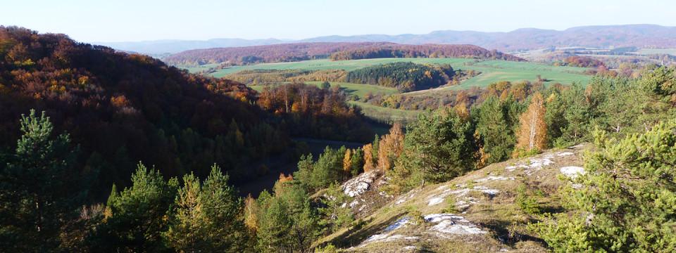 Wo der Harz am südlichsten ist!