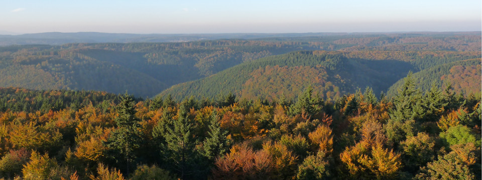 Poppenberg-Panorama